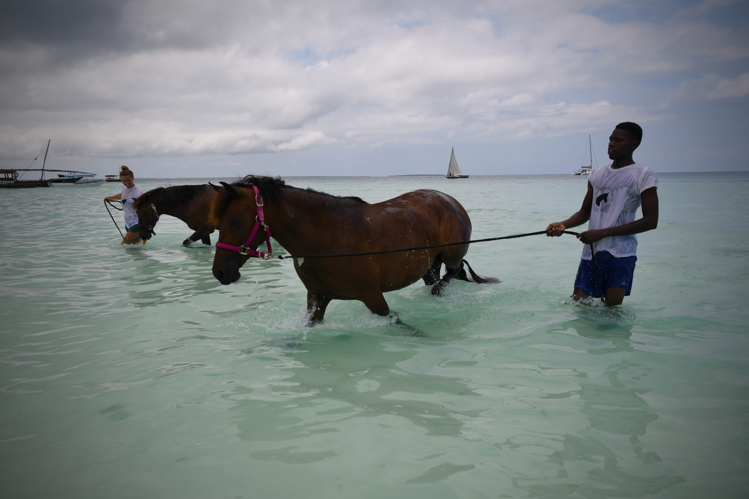 horses and riders cool down